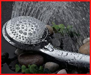 Best Shower Head For Handicapped